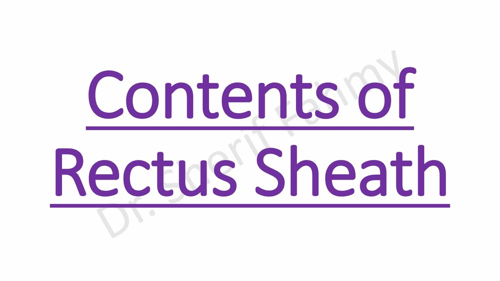 Contents of Rectus Sheath