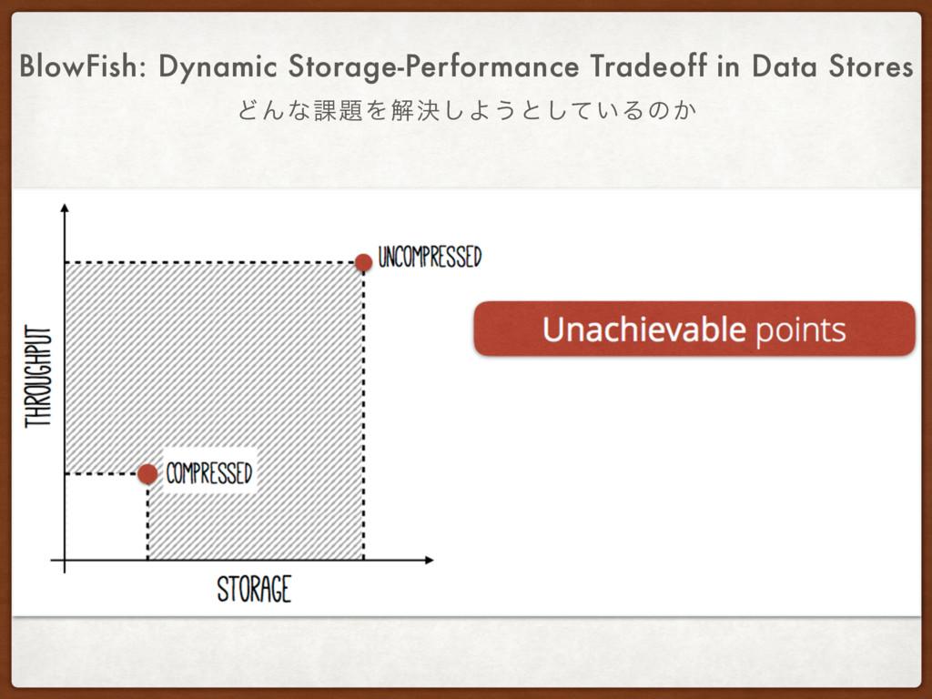 ͲΜͳ՝Λղܾ͠Α͏ͱ͍ͯ͠Δͷ͔ BlowFish: Dynamic Storage-Pe...