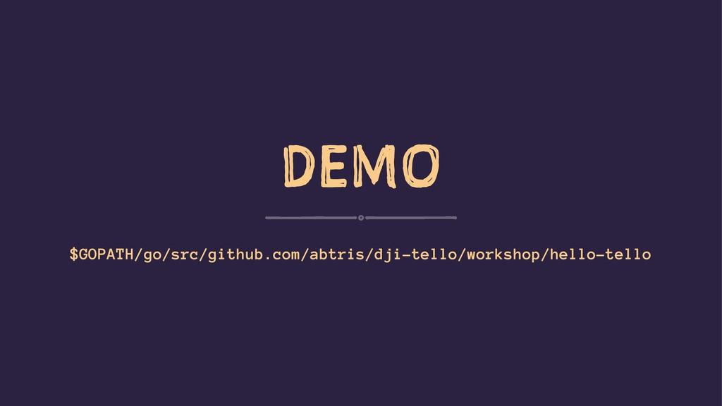 DEMO $GOPATH/go/src/github.com/abtris/dji-tello...