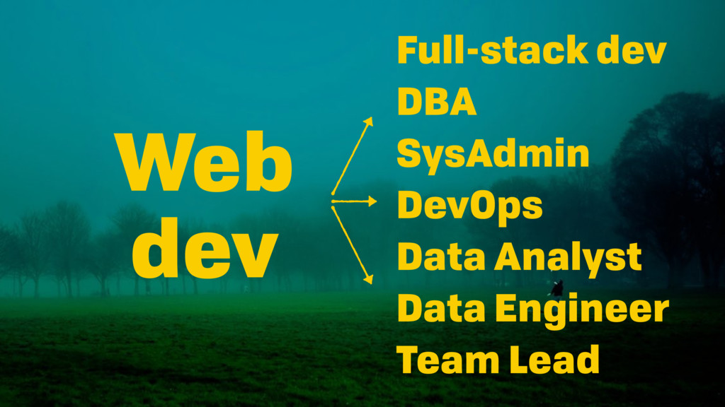 Web dev Full-stack dev DBA SysAdmin DevOps Data...