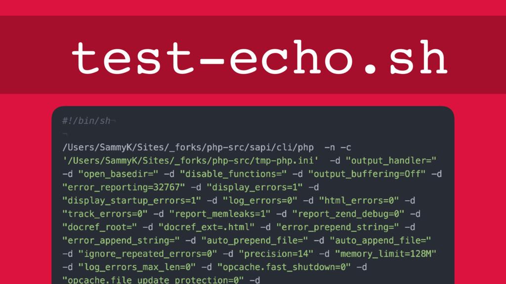 test-echo.sh