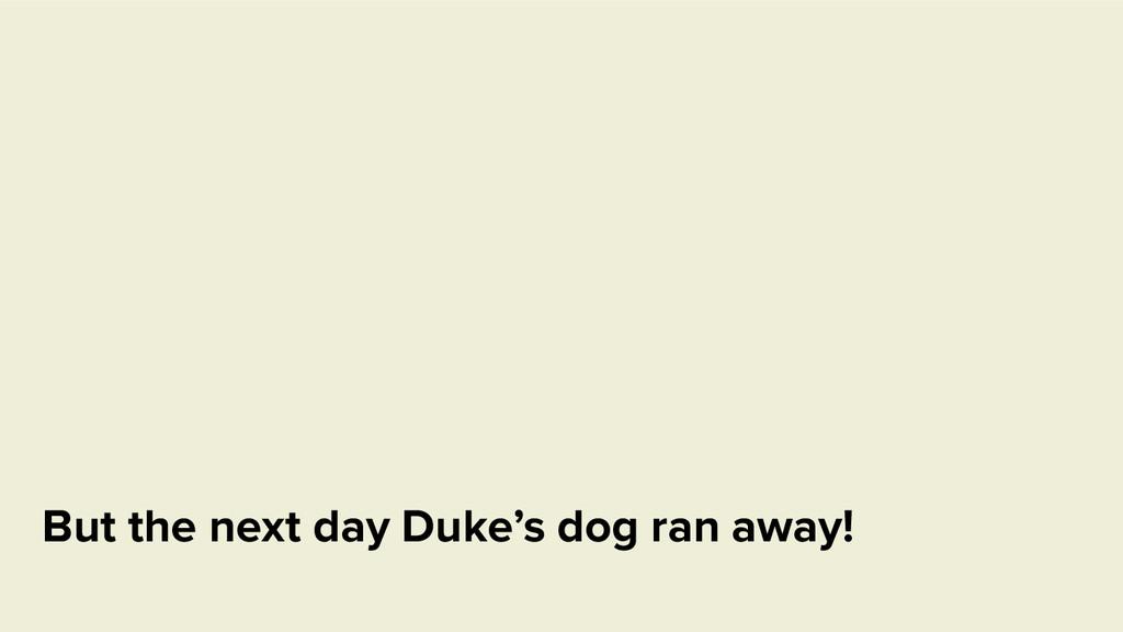 But the next day Duke's dog ran away!