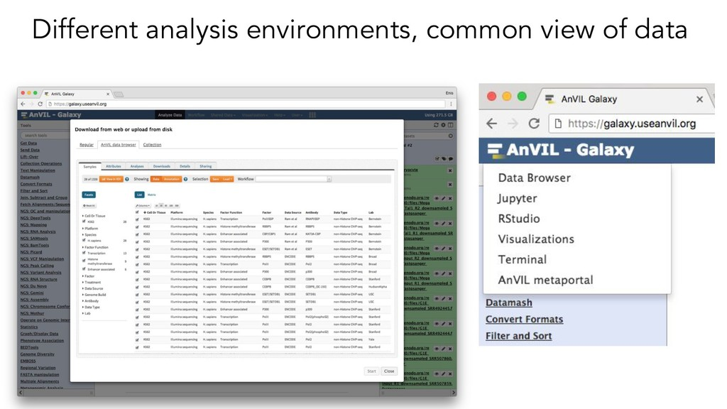 Different analysis environments, common view of...