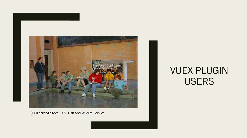 VUEX PLUGIN USERS .. , . .
