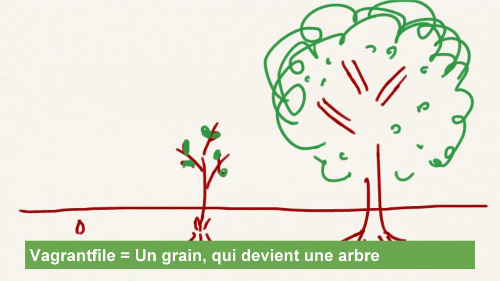 Vagrantfile = Un grain, qui devient une arbre