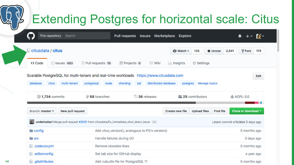 14 Extending Postgres for horizontal scale: Cit...