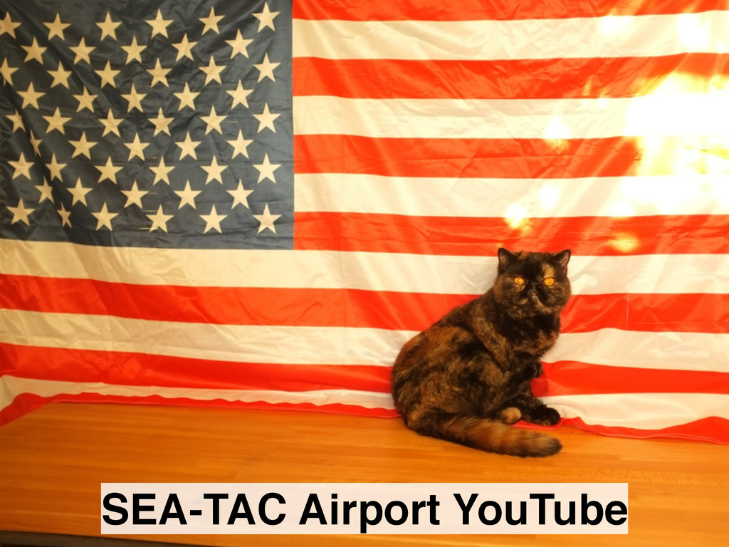 SEA-TAC Airport YouTube