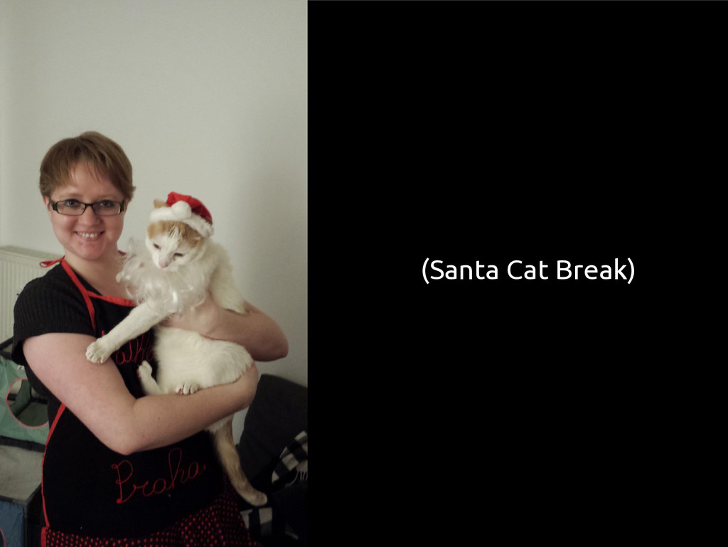(Santa Cat Break)