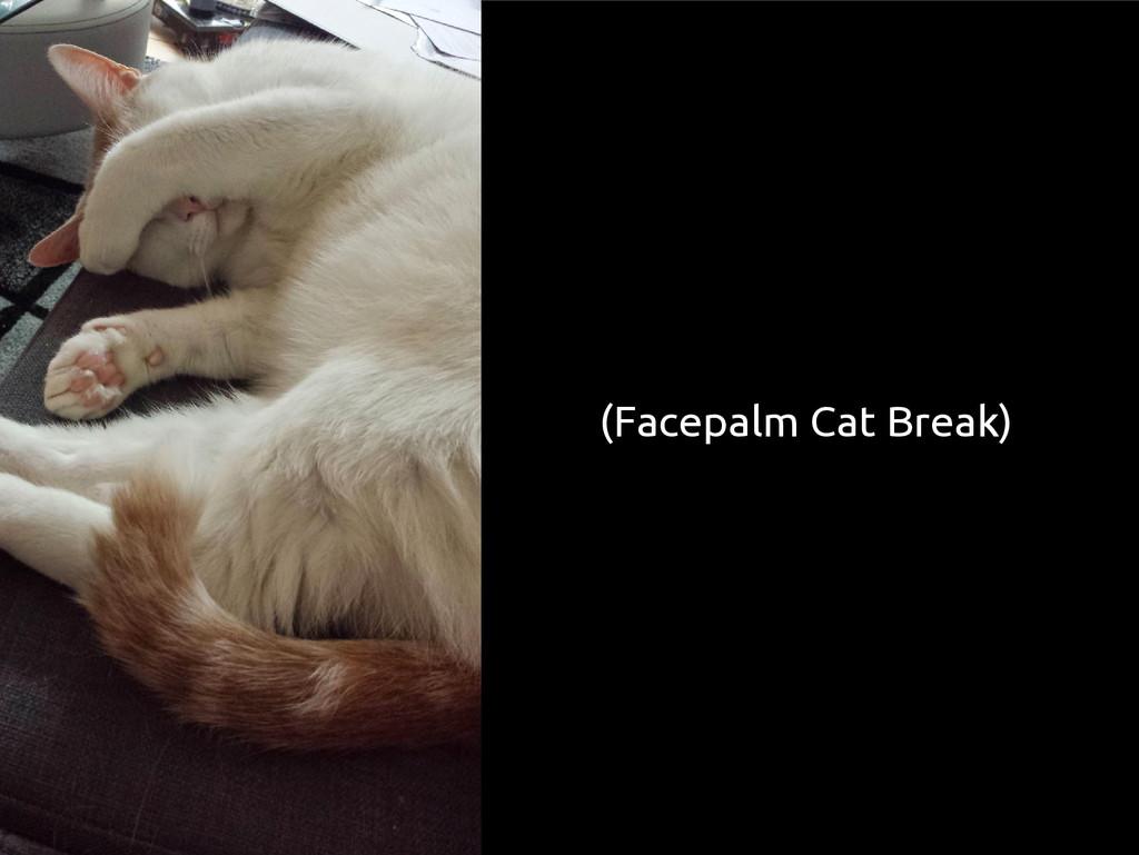 (Facepalm Cat Break)