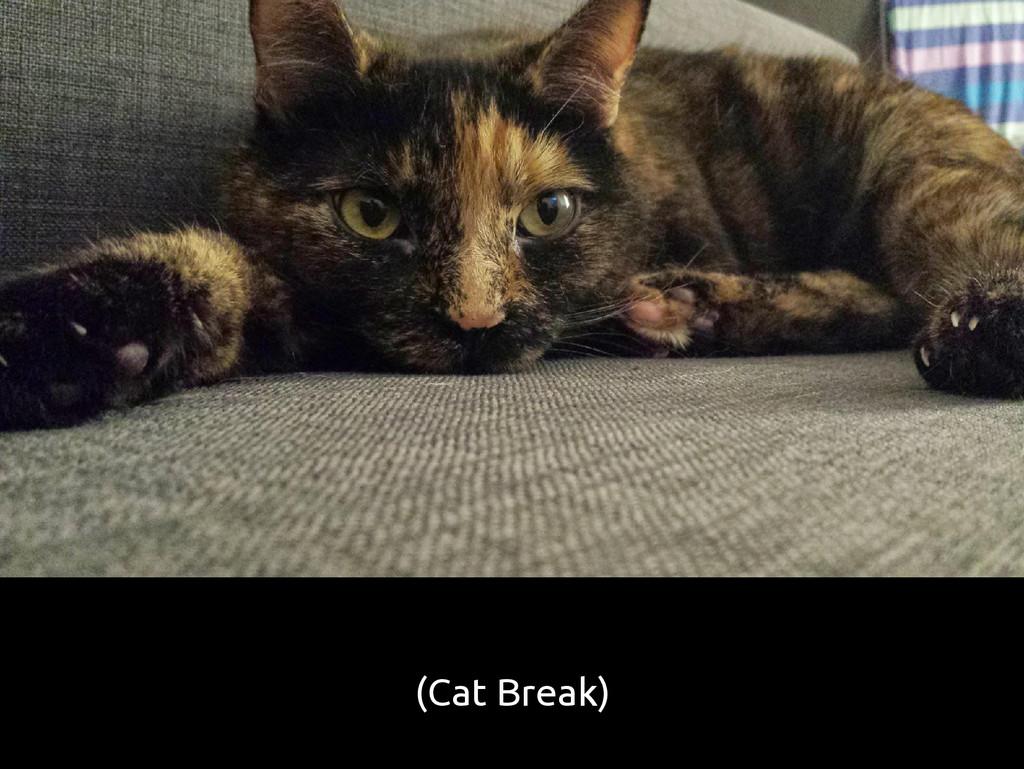 (Cat Break)