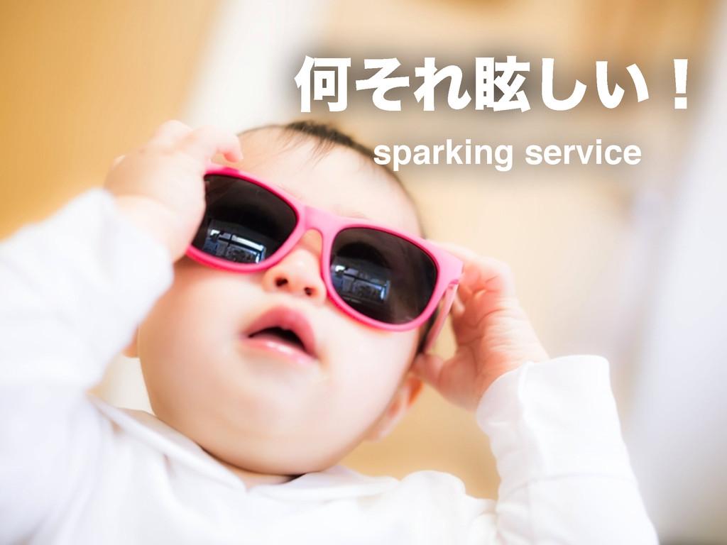 ԿͦΕᚶ͍͠ʂ sparking service