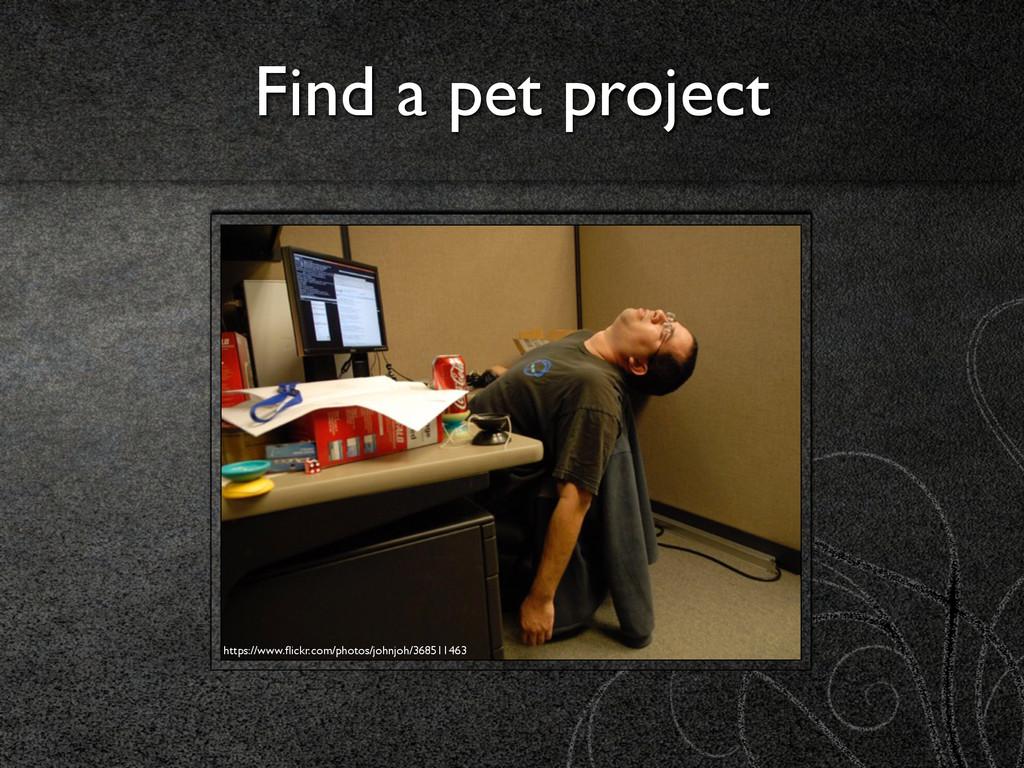 Find a pet project https://www.flickr.com/photos...