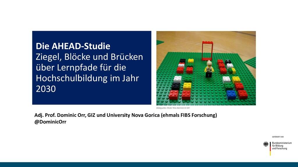 Die AHEAD-Studie Ziegel, Blöcke und Brücken übe...