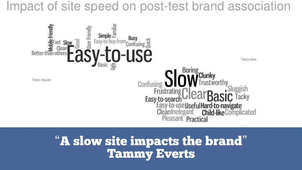 """""""A slow site impacts the brand"""" Tammy Everts"""