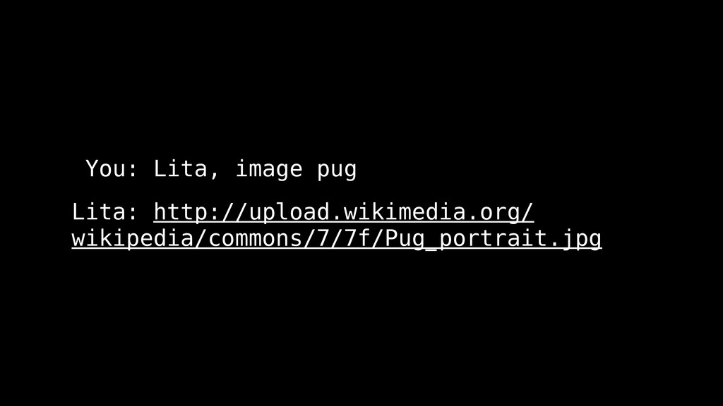 You: Lita, image pug Lita: http://upload.wikime...