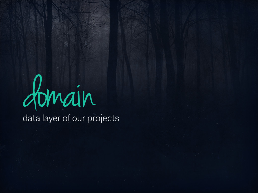 domain data layer of our projects
