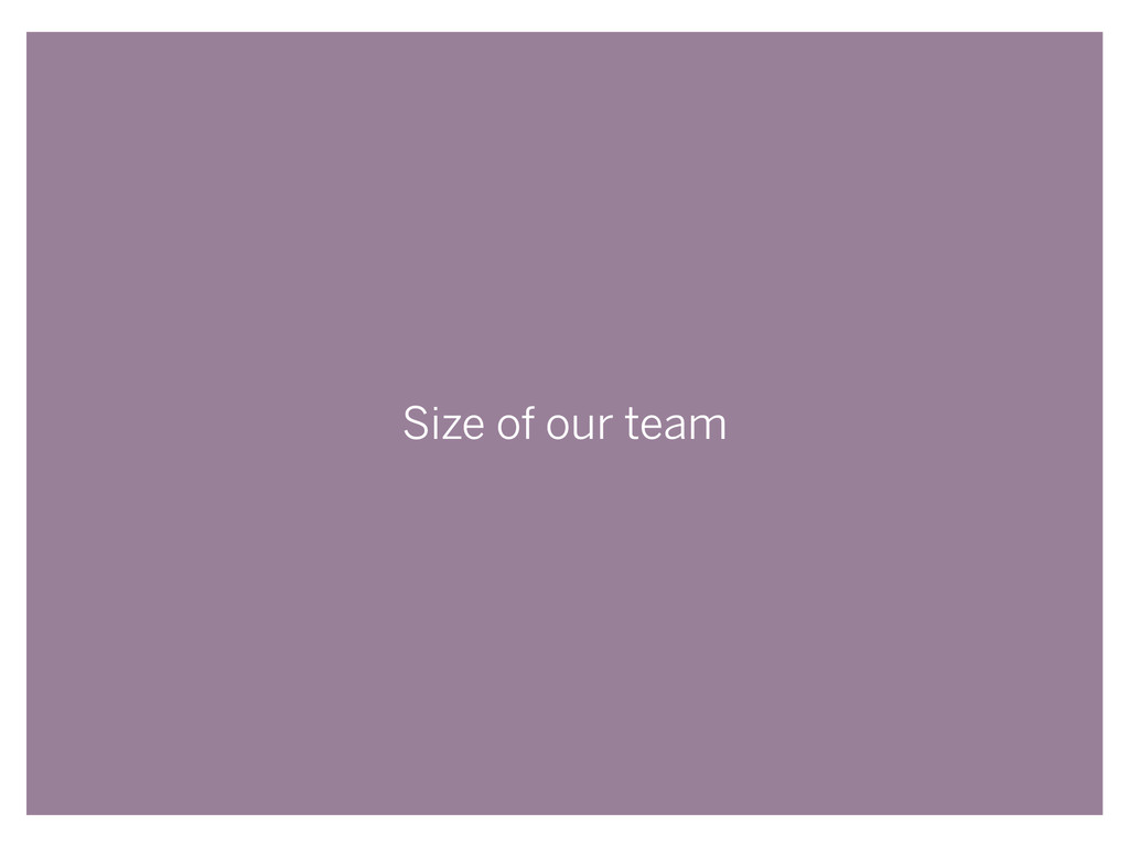 Size of our team
