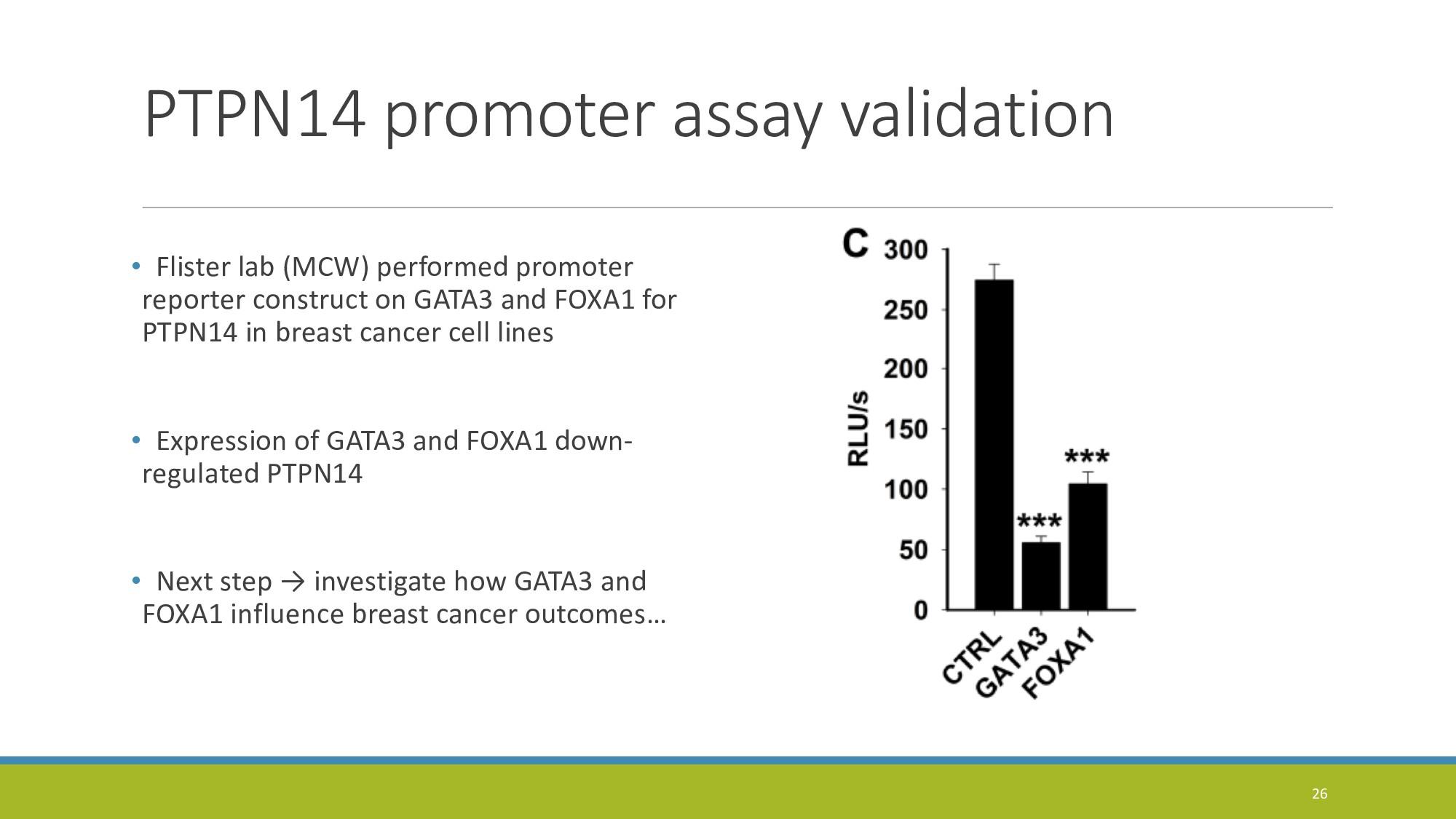 PTPN14 promoter assay validation • Flister lab ...