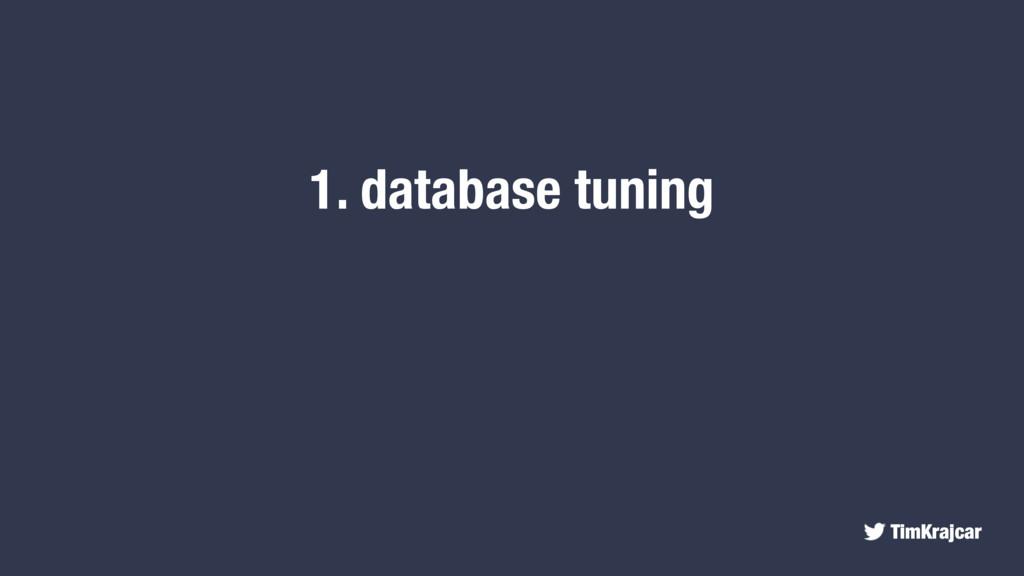TimKrajcar 1. database tuning