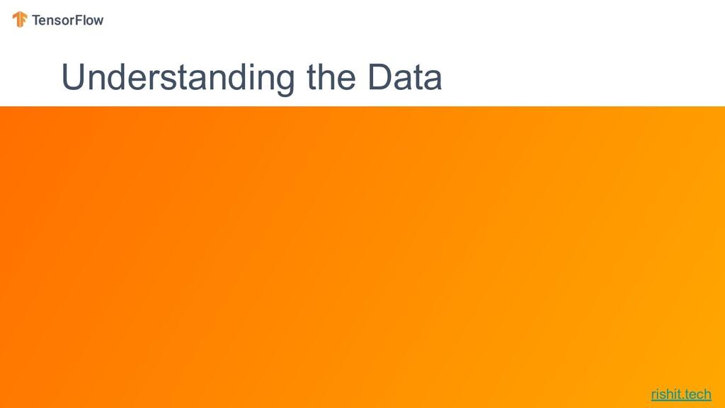 rishit.tech Understanding the Data