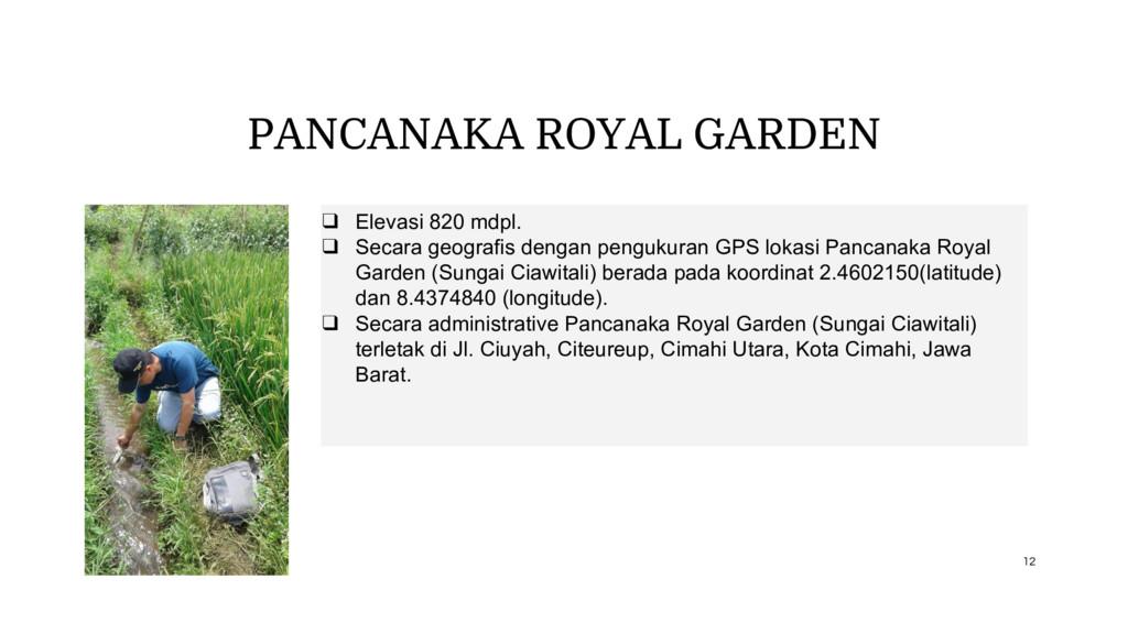 PANCANAKA ROYAL GARDEN ❑ Elevasi 820 mdpl. ❑ Se...