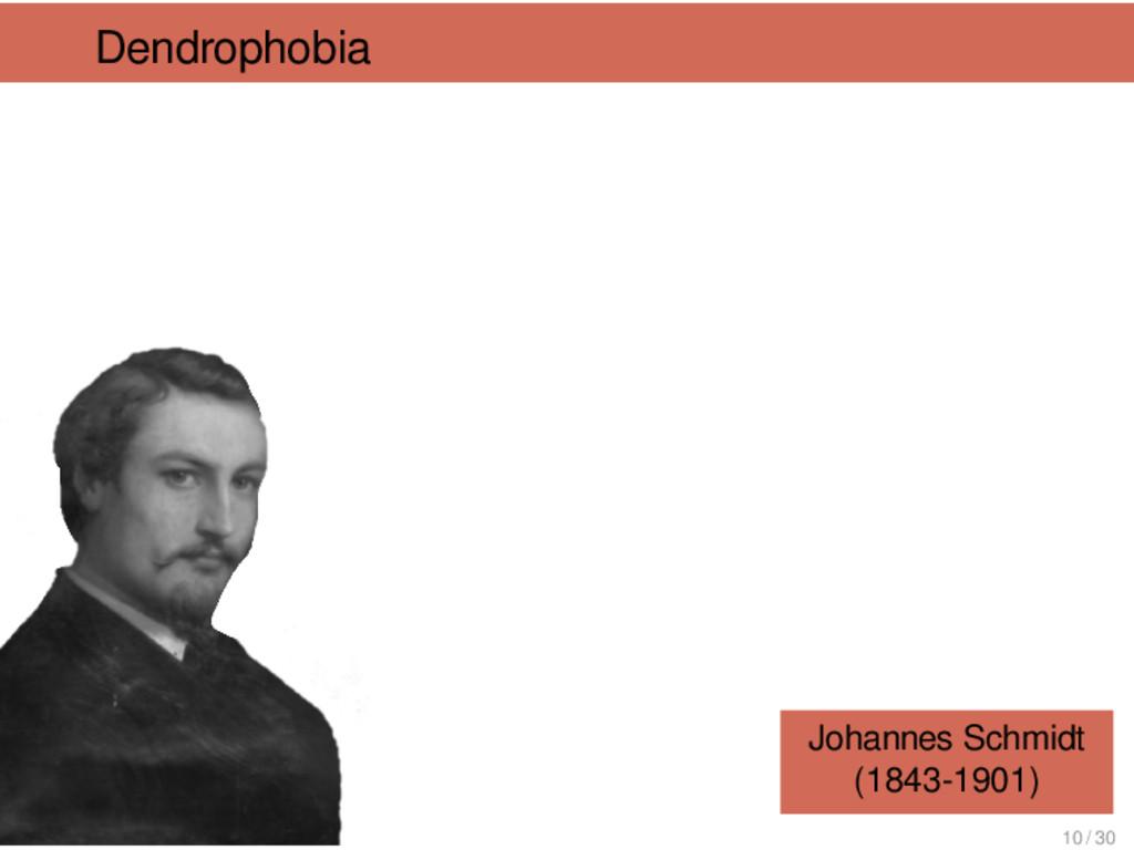 Dendrophobia Johannes Schmidt (1843-1901) 10 / ...