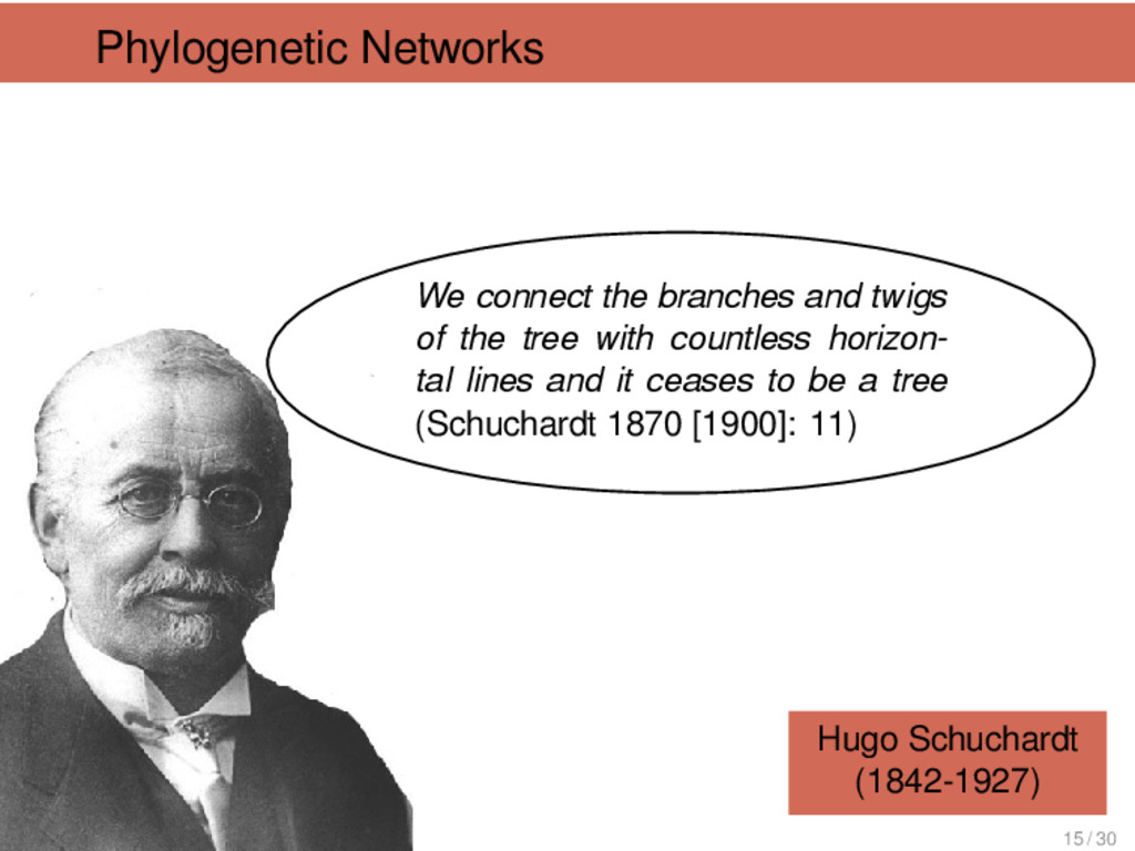 Phylogenetic Networks Hugo Schuchardt (1842-192...