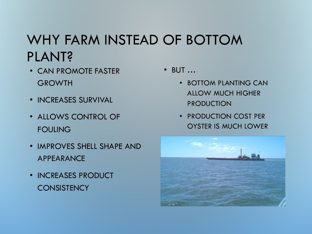 WHY FARM INSTEAD OF BOTTOM PLANT? • BUT … • BOT...