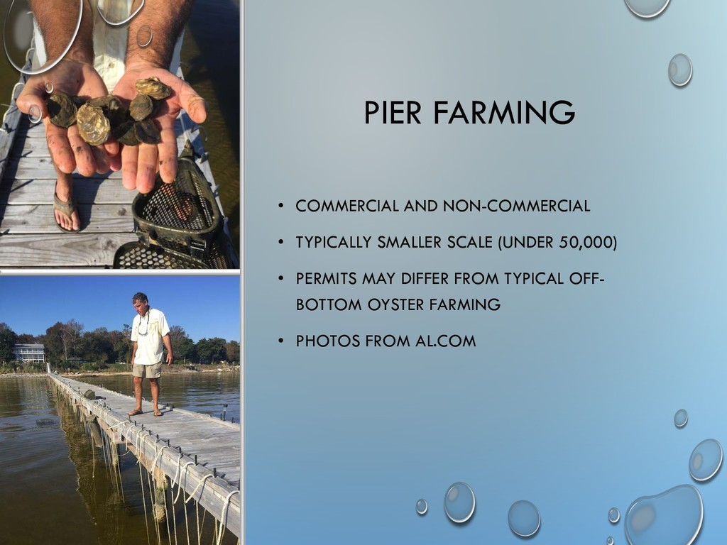 PIER FARMING • COMMERCIAL AND NON-COMMERCIAL • ...