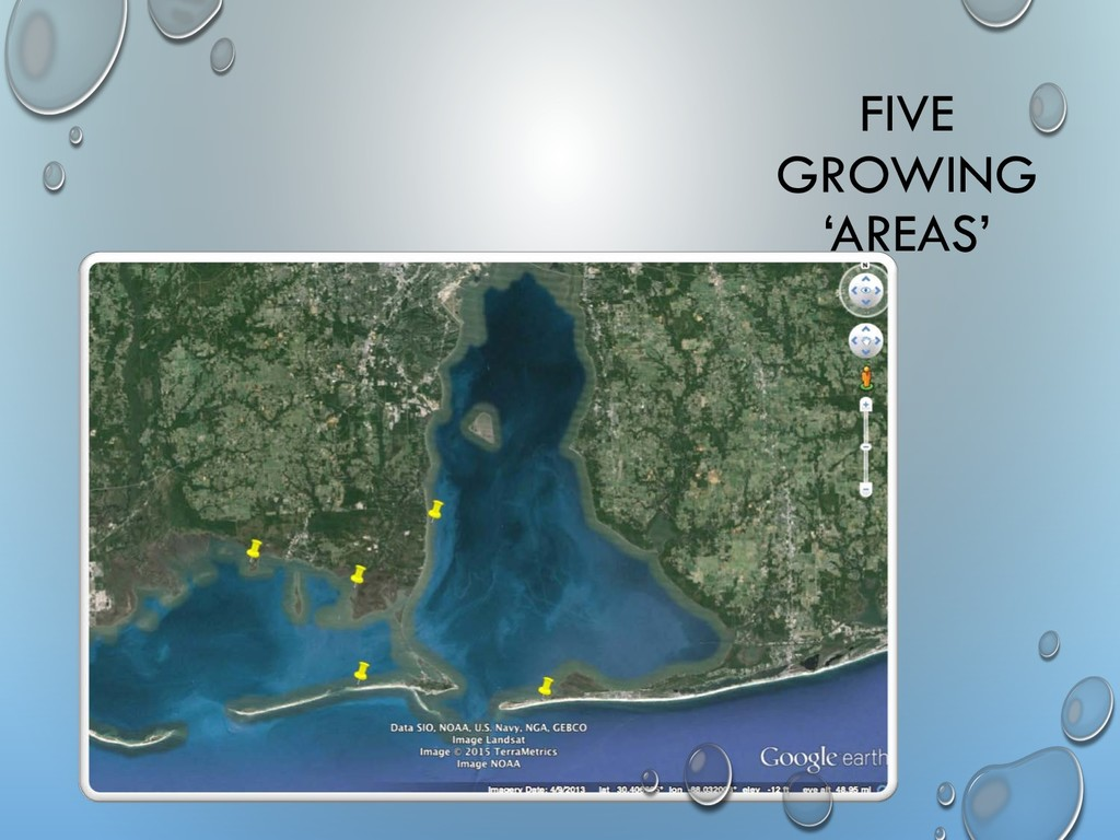 FIVE GROWING 'AREAS'