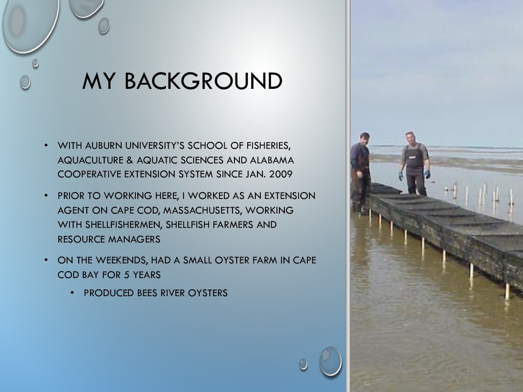 MY BACKGROUND • WITH AUBURN UNIVERSITY'S SCHOOL...