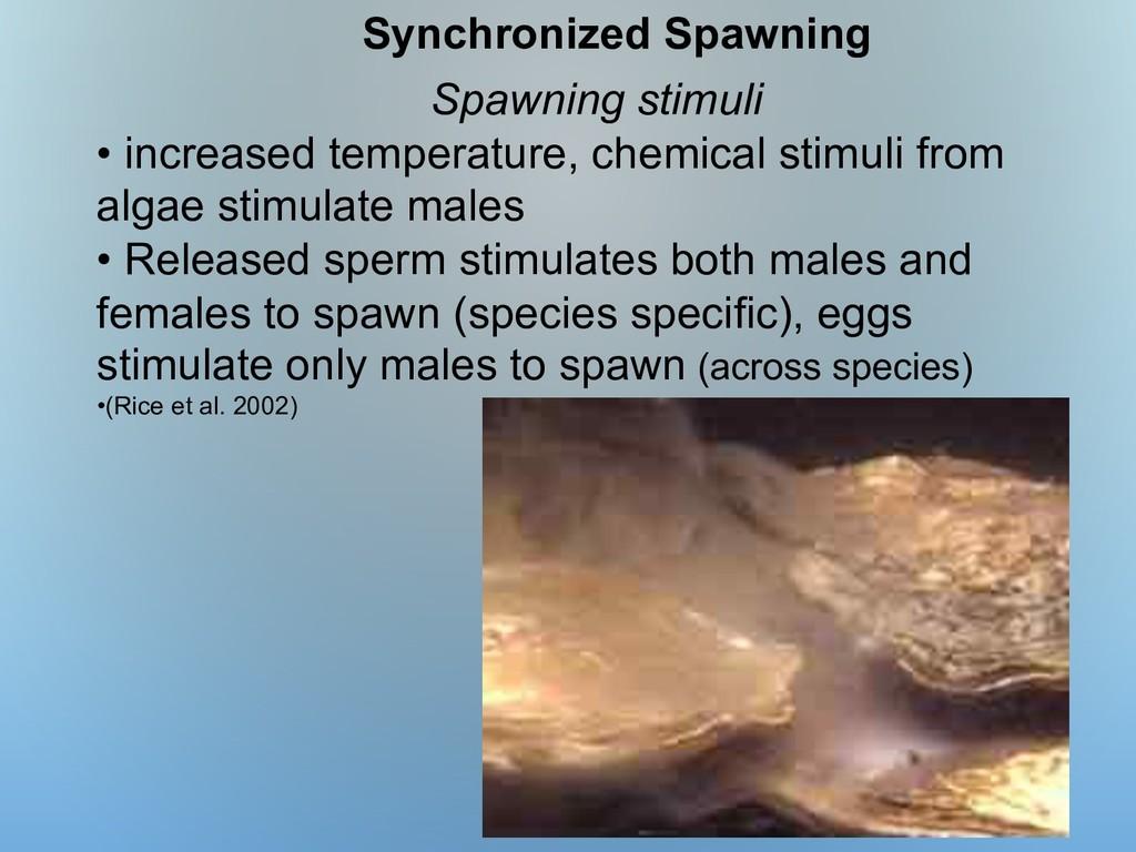 Spawning stimuli • increased temperature, chemi...
