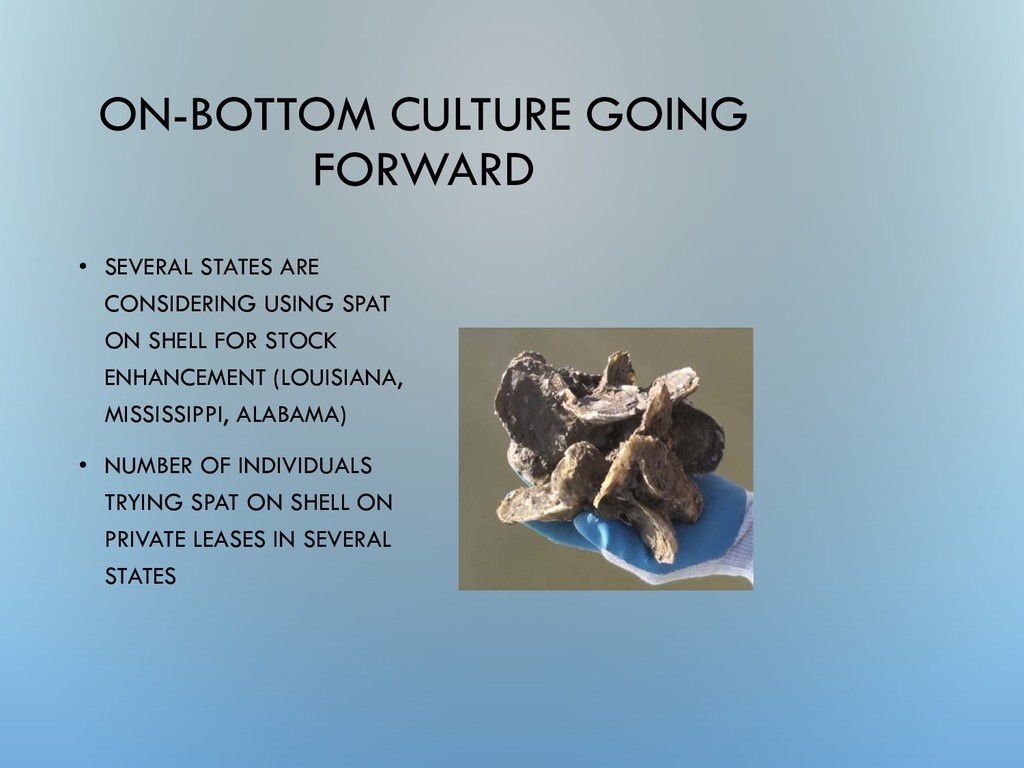 ON-BOTTOM CULTURE GOING FORWARD • SEVERAL STATE...