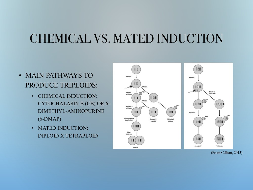 CHEMICAL VS. MATED INDUCTION • MAIN PATHWAYS TO...