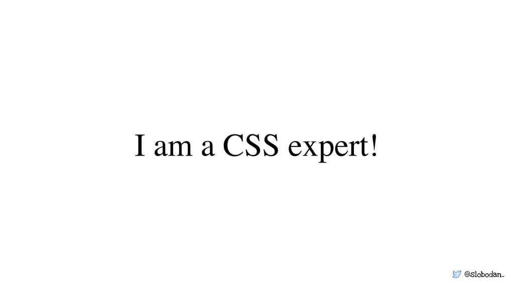 @slobodan_ I am a CSS expert!