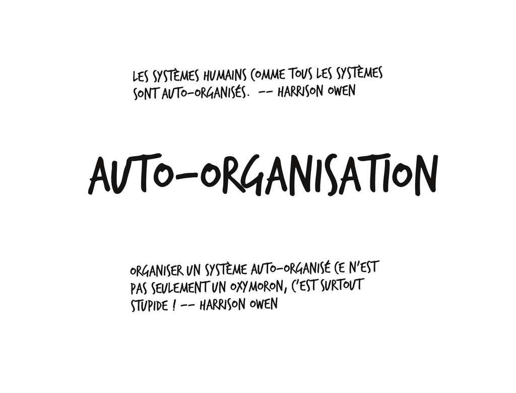 Auto‐organisation Les systèmes humains comme to...