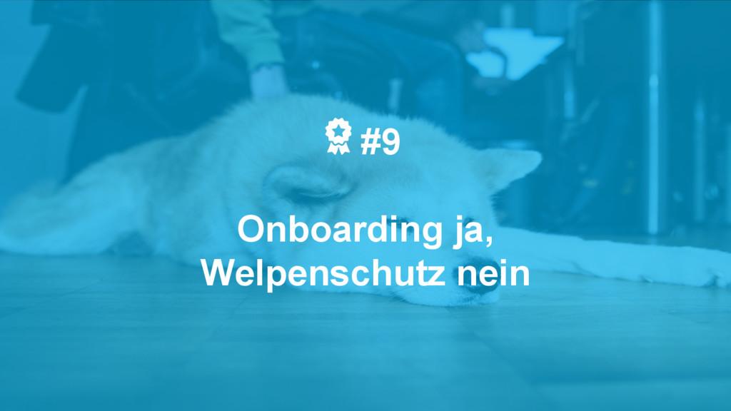 #9 Onboarding ja, Welpenschutz nein