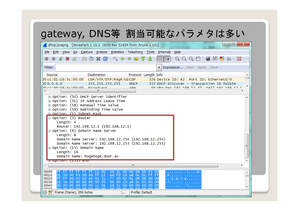 gateway, DNS等 割当可能なパラメタは多い