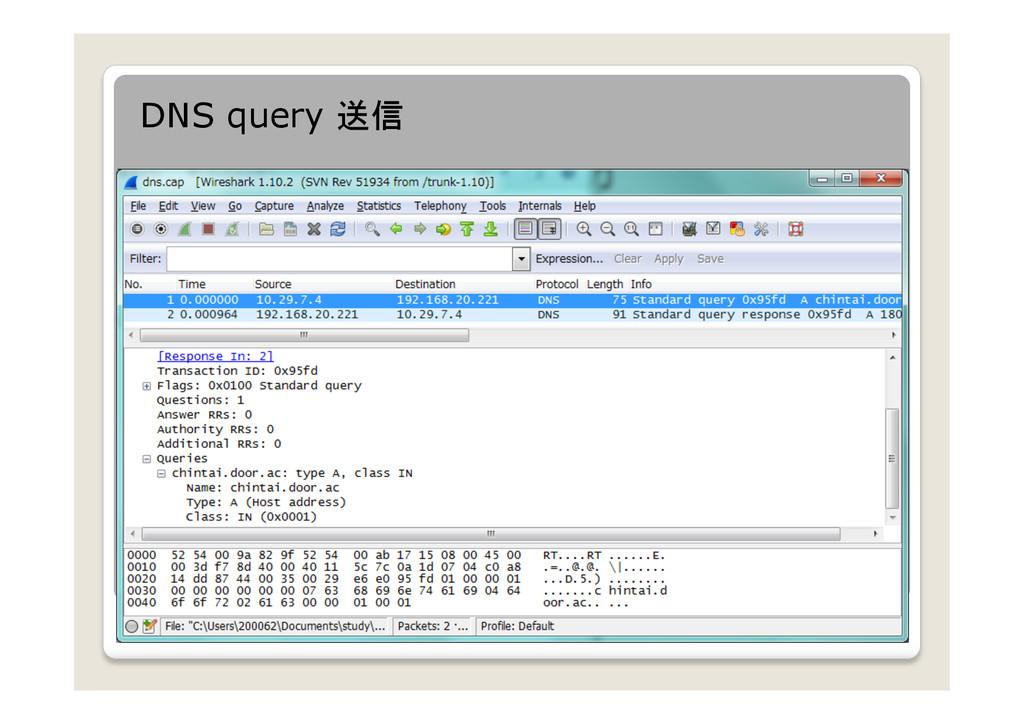 DNS query 送信
