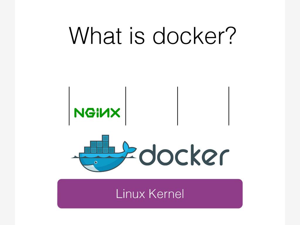 What is docker? Linux Kernel