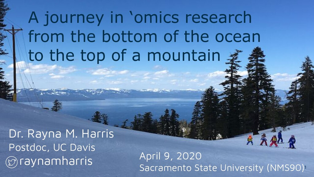 A journey in 'omics research from the bottom of...