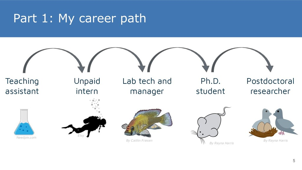 Part 1: My career path Ph.D. student Unpaid int...