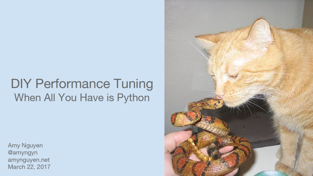 DIY Performance Tuning When All You Have is Pyt...
