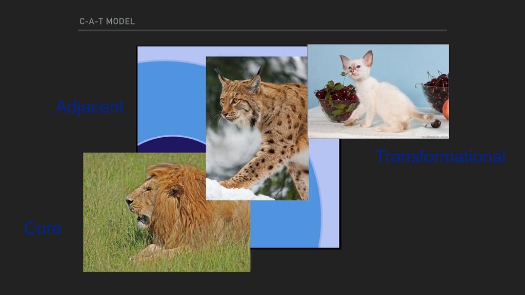 C-A-T MODEL Core Adjacent Transformational