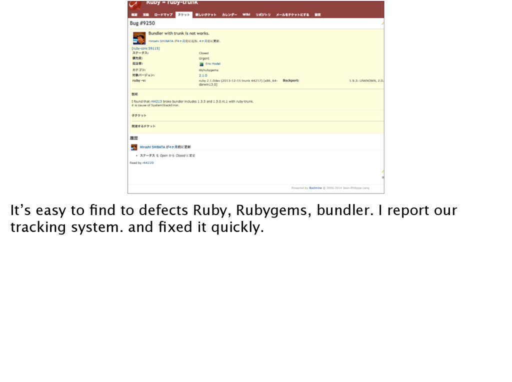 It's easy to find to defects Ruby, Rubygems, bun...