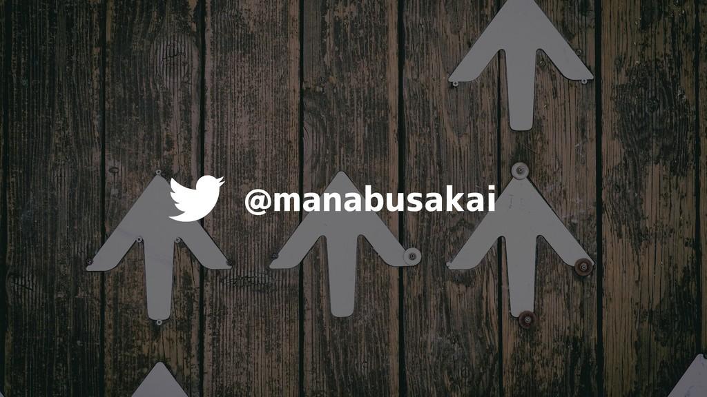 @manabusakai