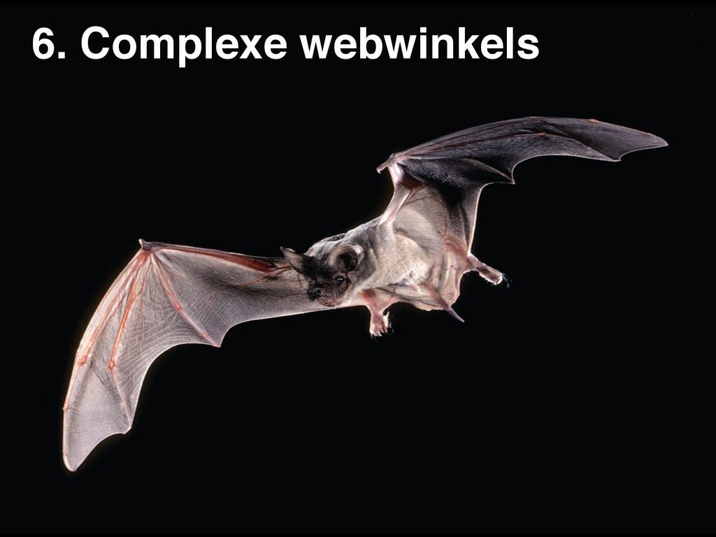 6. Complexe webwinkels