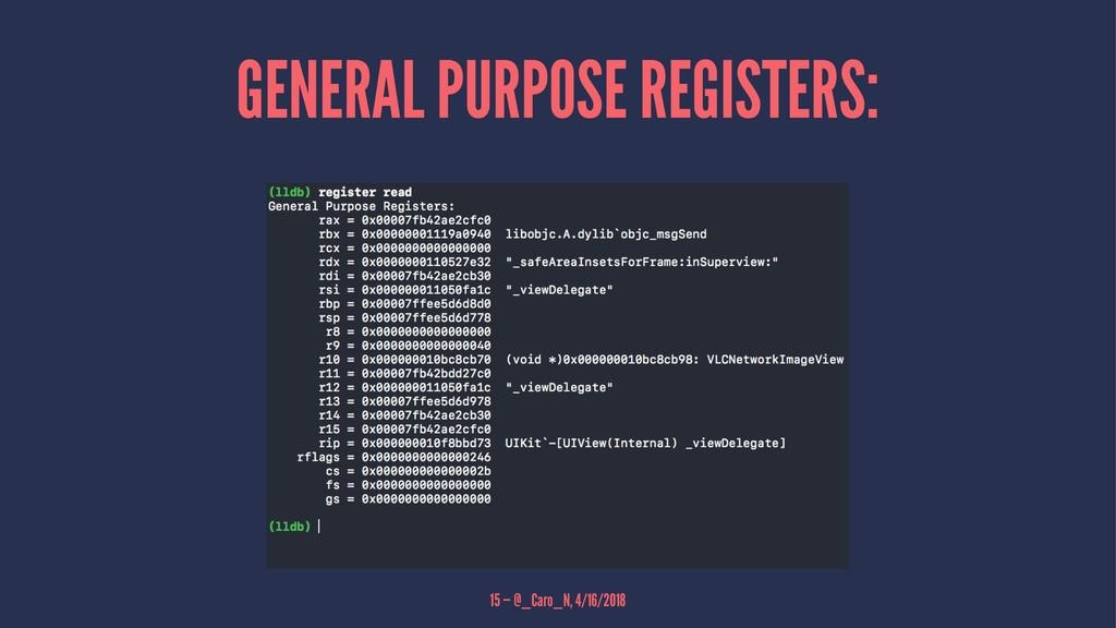 GENERAL PURPOSE REGISTERS: 15 — @_Caro_N, 4/16/...