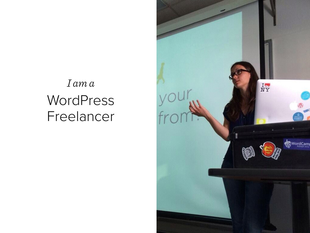 I am a  WordPress Freelancer