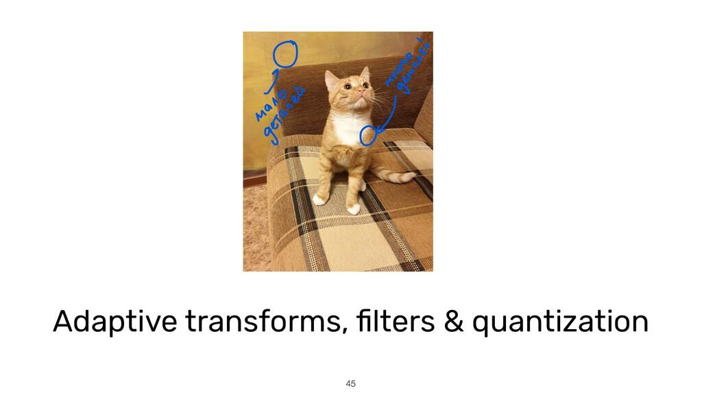 45 Adaptive transforms, fi lters & quantization...